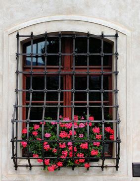La grille de fenêtre